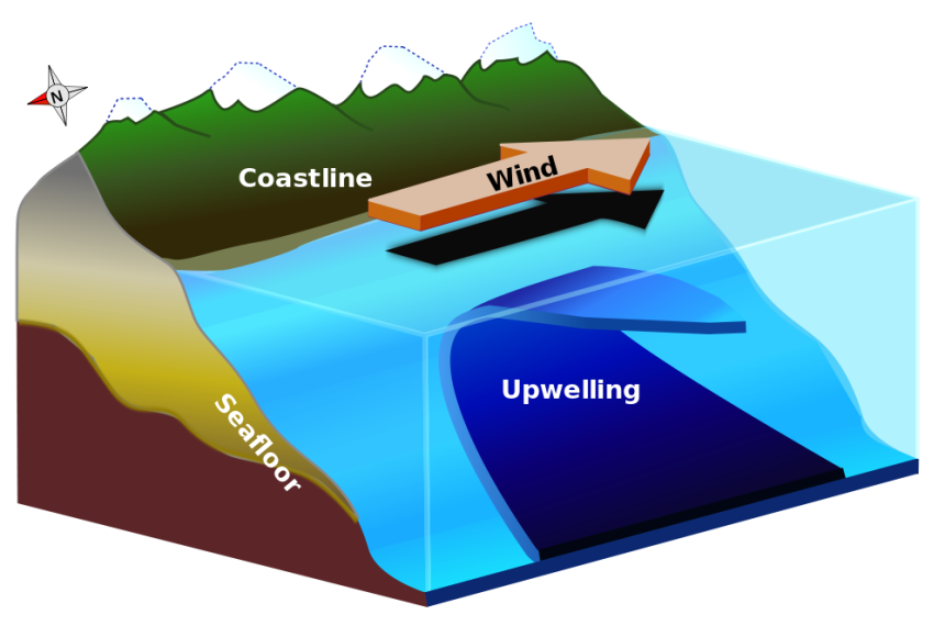 Galapagos Graphics: Upwelling
