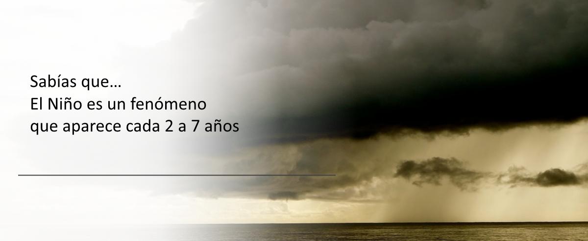 ninio2